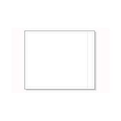 10 x 12 Clear Face Packing List Envelope